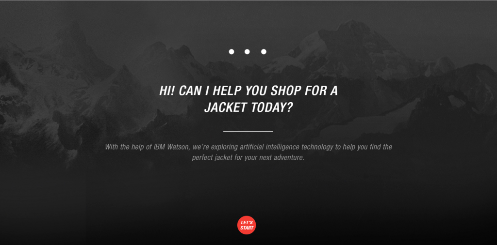 The North Face AI