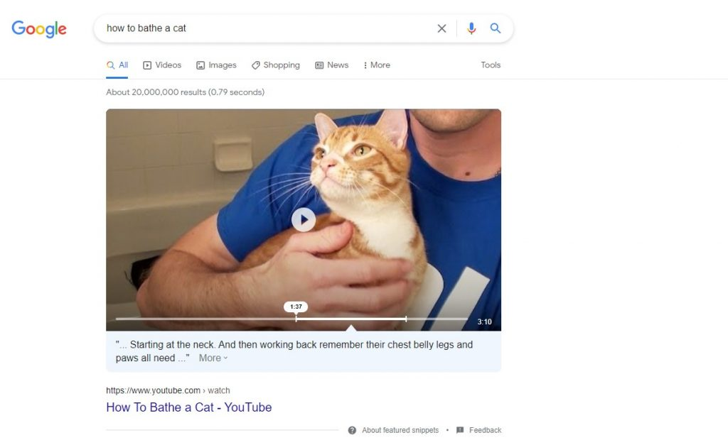 a featured snippet for the how to bathe a cat keyword